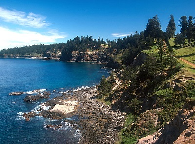 800px-Norfolk_Island_Rocky_Point